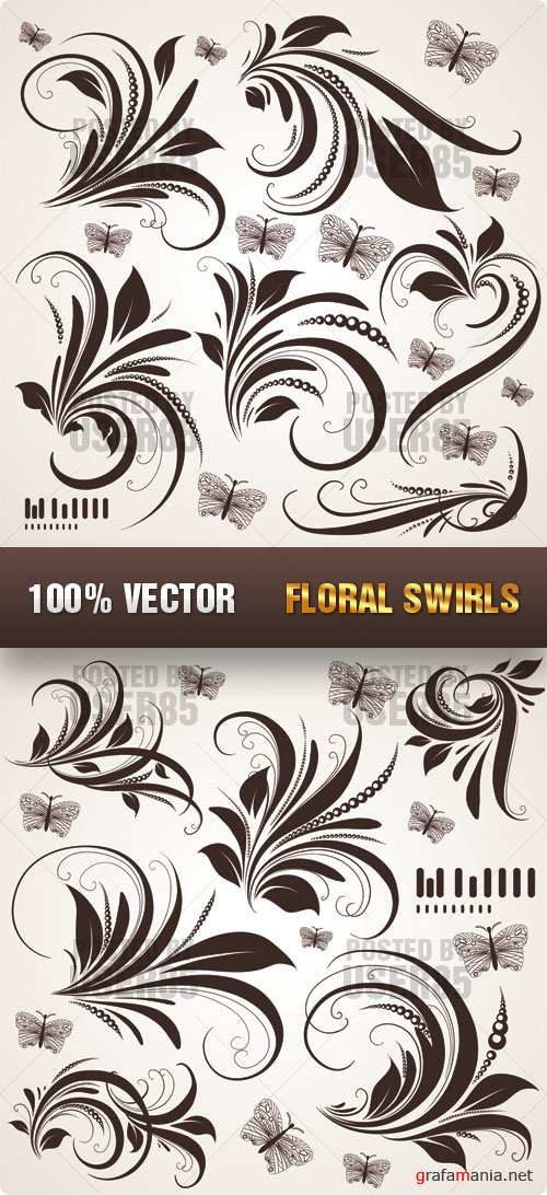 Stock Vector - Floral Swirls