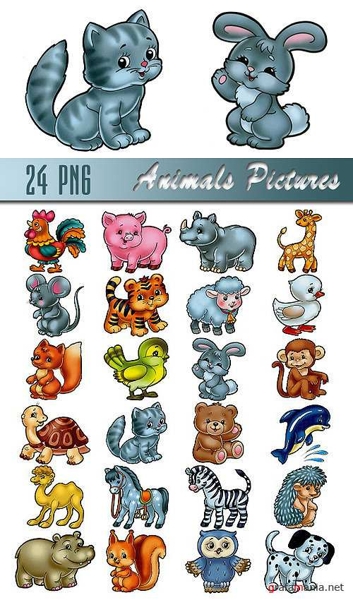 Animals Pictures