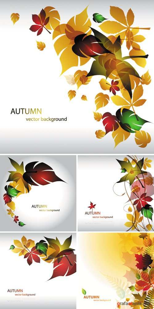 Charming Autumn Leaves