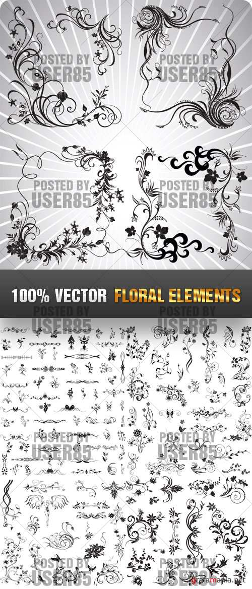 Stock Vector - Floral Elements