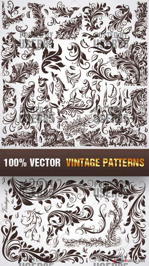 Stock Vector - Vintage Patterns
