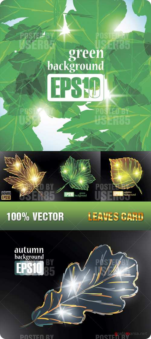 Stock Vector - Leaves Card