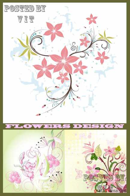 Flowers Backgrounds 102