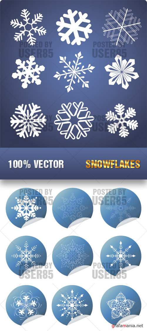 Stock Vector - Snowflakes