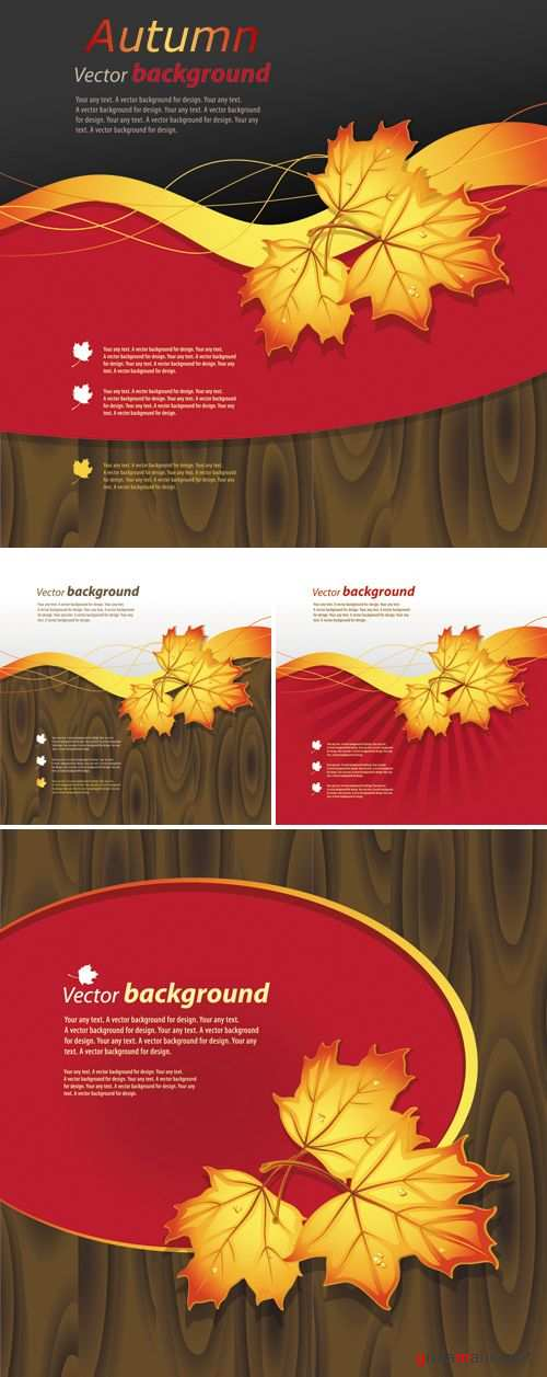 Autumn Leaf Backgrounds Vector