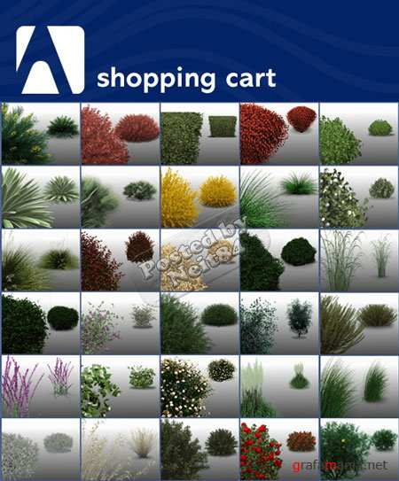 3D models Archvision Shrubs&Ornamental Grasses vol.1