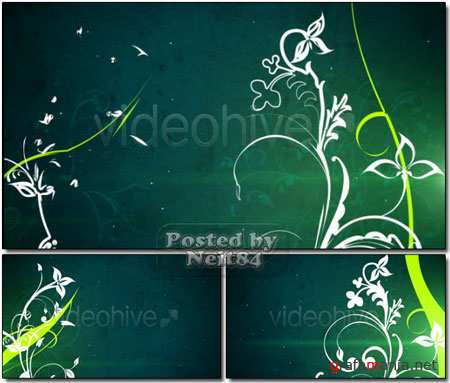 VideoHive motion Vector flowers 3 loop