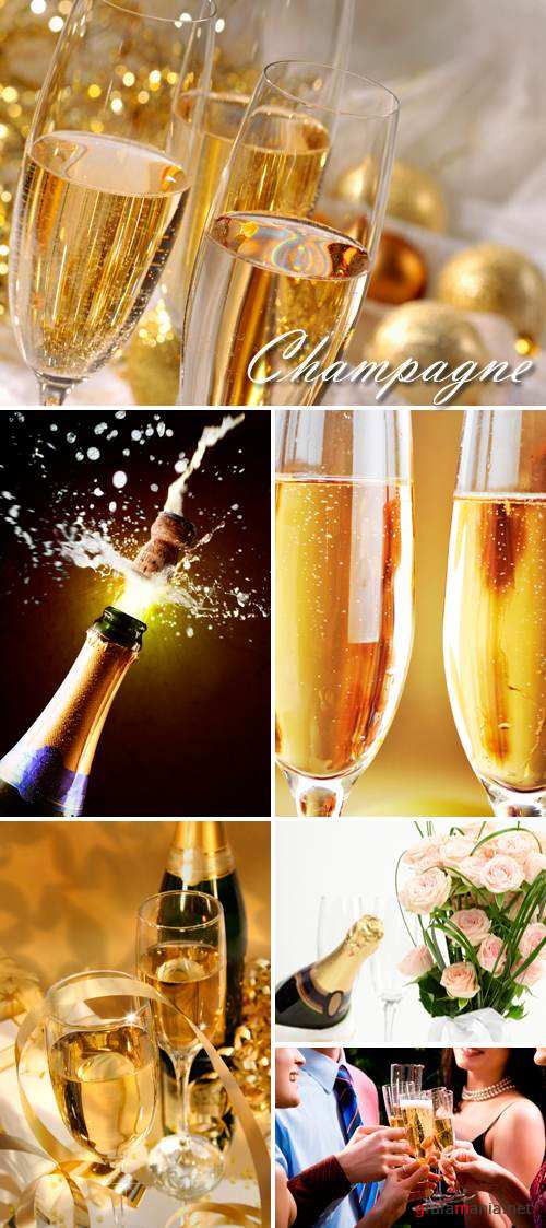 Stock Photo - Champagne