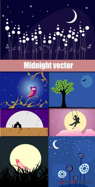 Midnight vector
