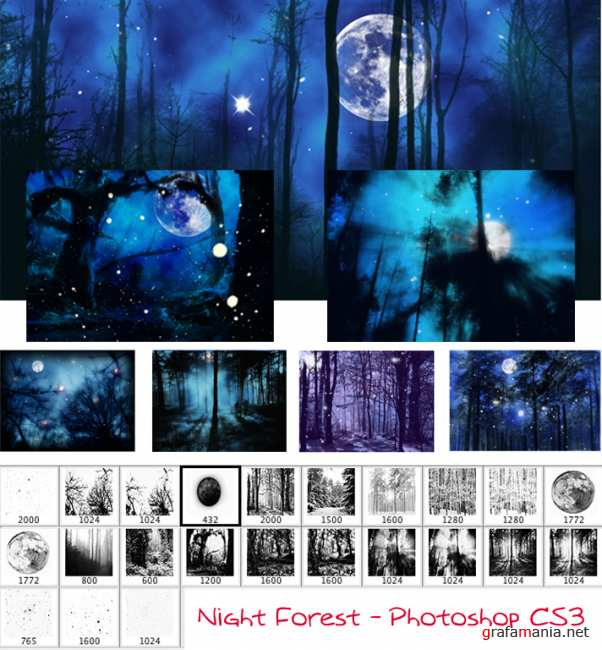 Night Forest Brushes by Elbereth-de-Lioncour