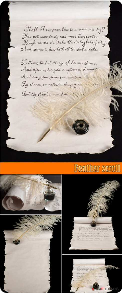 Feather scroll
