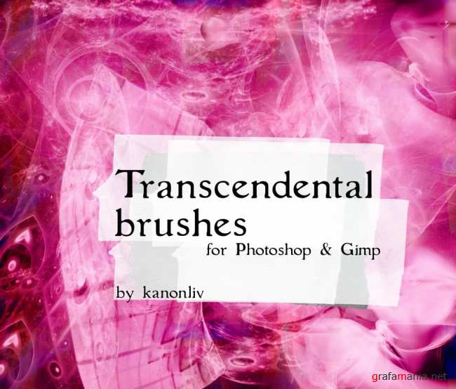 Transcendental Brushes