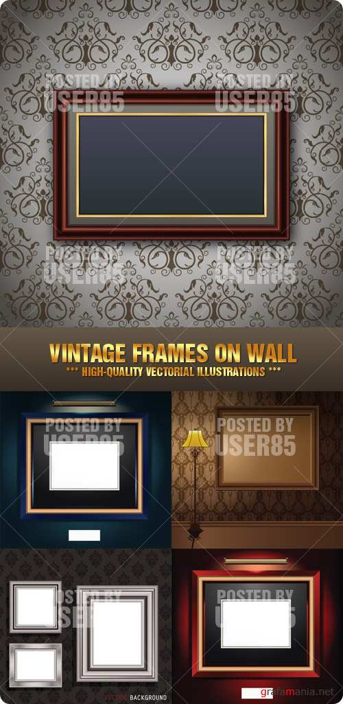 Stock Vector - Vintage Frames on Wall