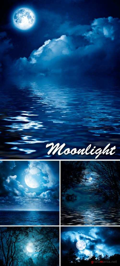 Stock Photo - Mystical Moonlight