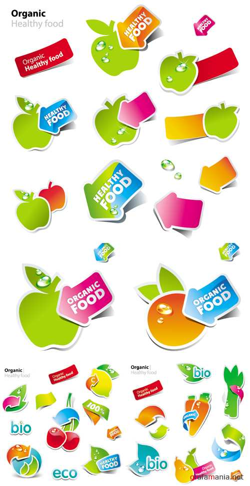 Organic Healthy Food Stickers Vector