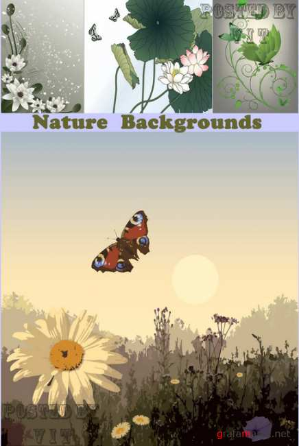 Nature Backgrounds 61