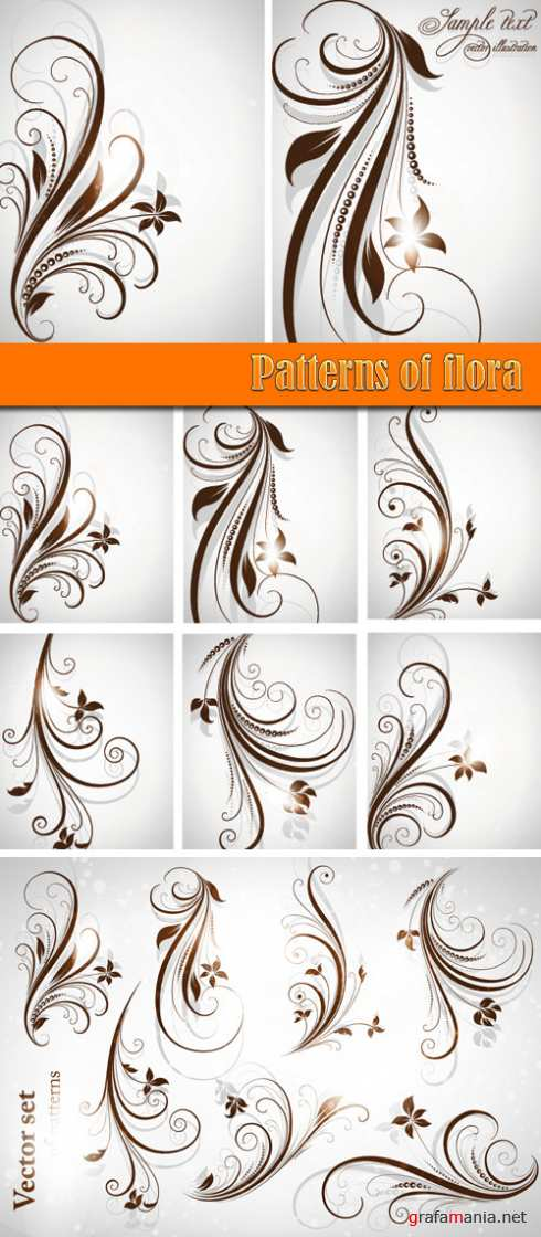 Patterns of flora