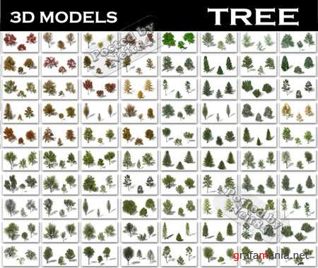 3d models Tree of GreenWorks for 3ds max and Maya