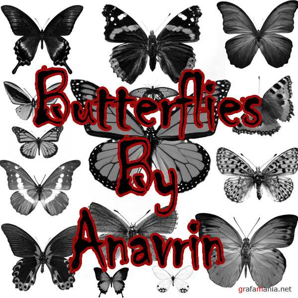 15 Butterfly PS Brushes