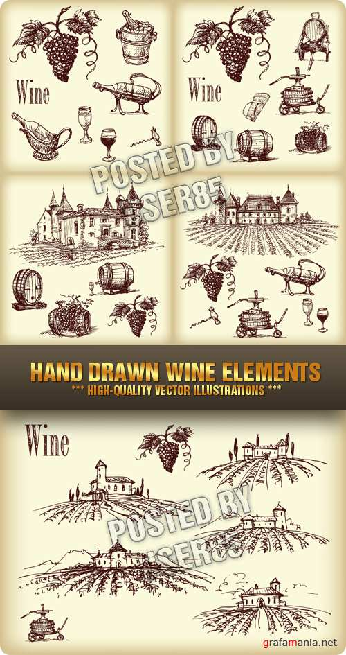 Stock Vector - Hand Drawn Wine Elements