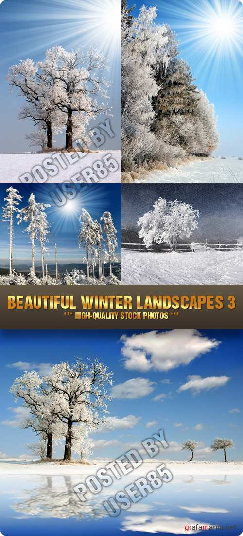 Stock Photo - Beautiful Winter Landscapes 3
