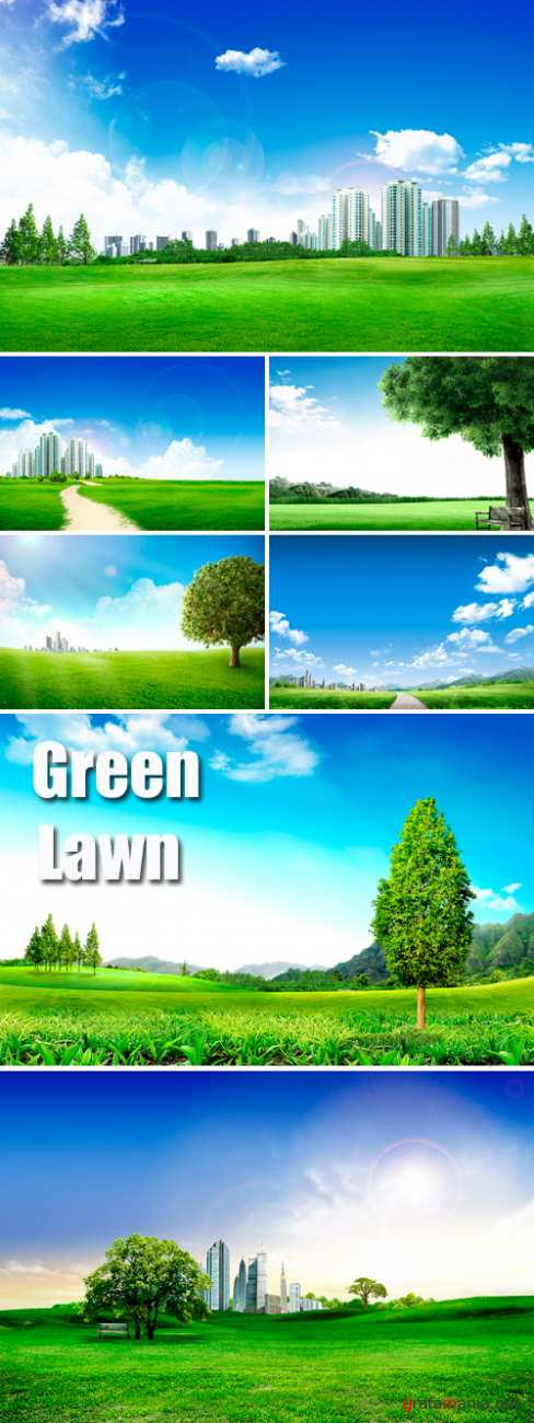 Stock Photo - Green Lawn