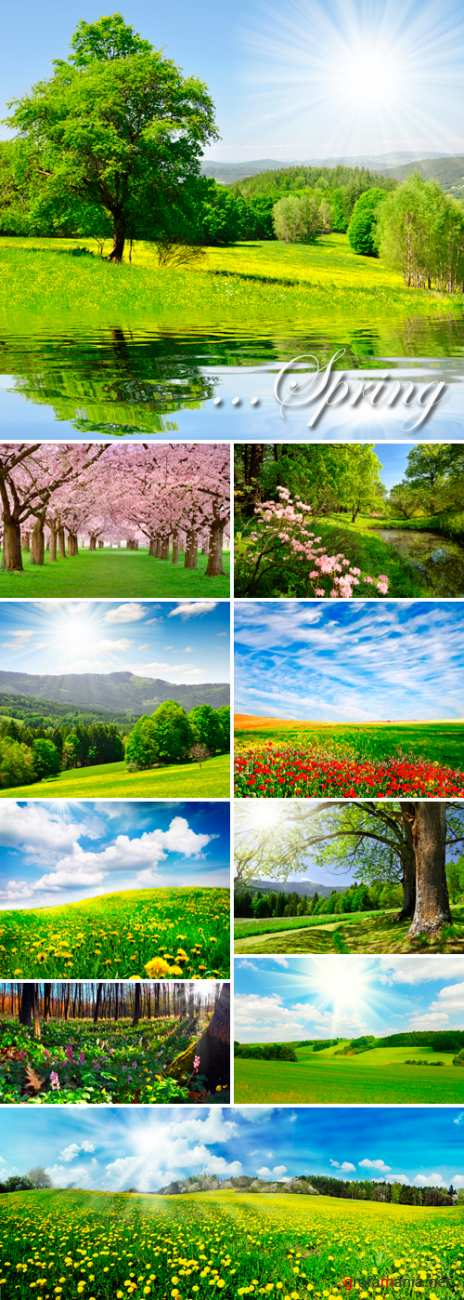 Stock Photo - Spring Landscapes