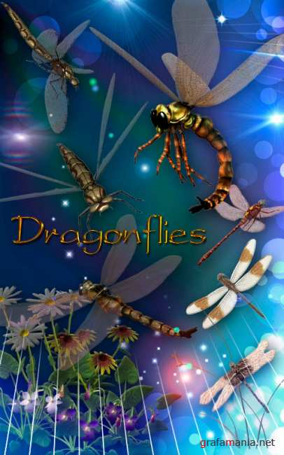 ������� Dragonfly- ��������