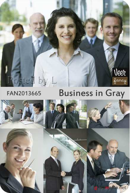 Veer Fancy - Business in Gray
