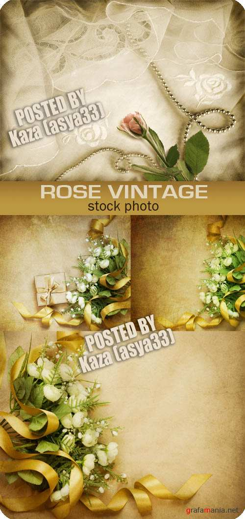 Vintage rose backgrounds