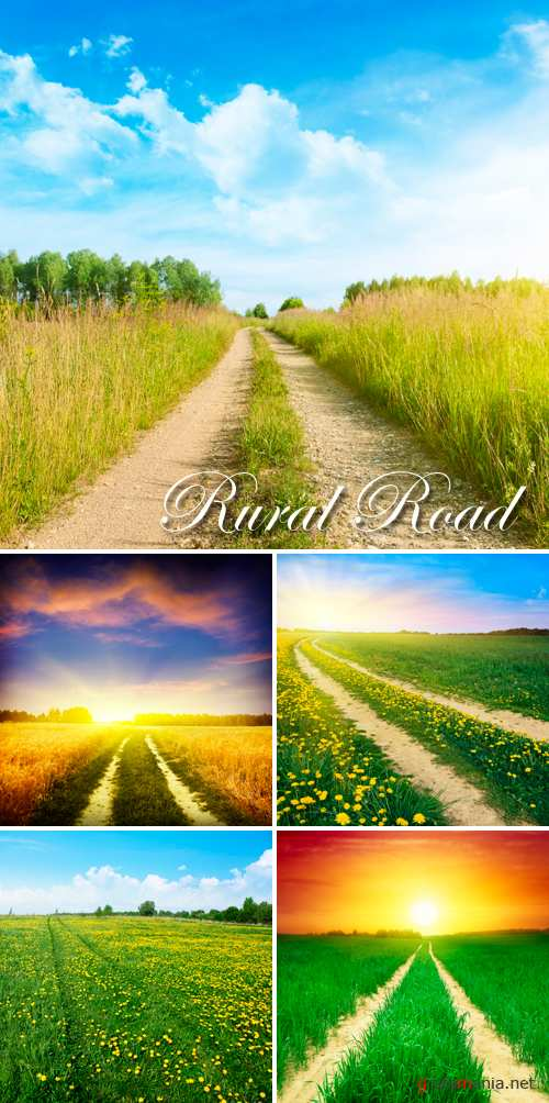 Stock Photo - Rural Road