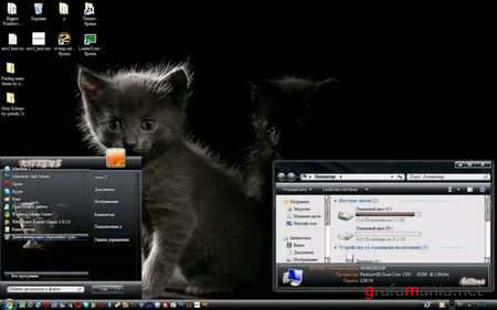 Grey Kittens Theme for Windows 7