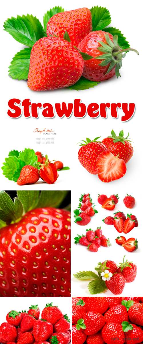 Stock Photo - Strawberry