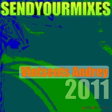 Vintsents Andrey - Two mixes in 2011 (2011)
