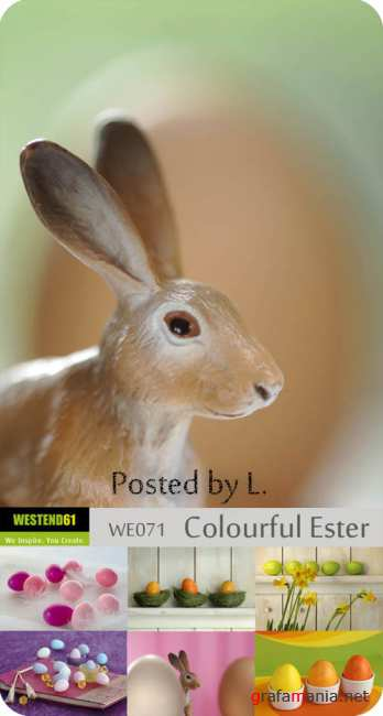 WE071   Colourful Easter