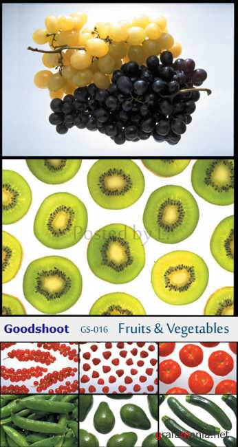 GS-016  Fruits & Vegetables
