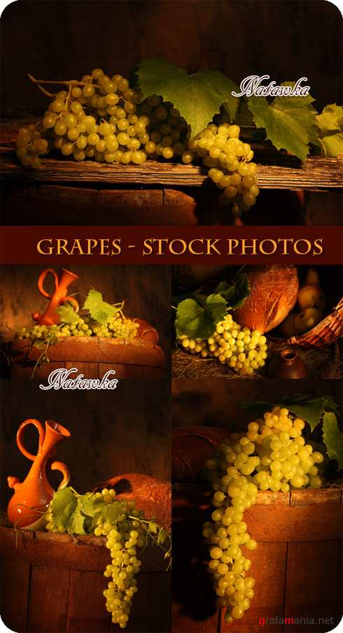 Grapes - Stock Photos