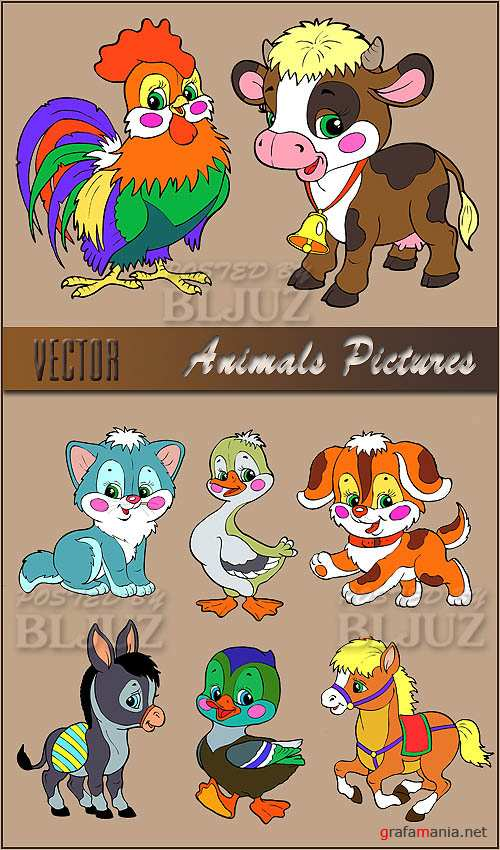 Vector Animals Pictures