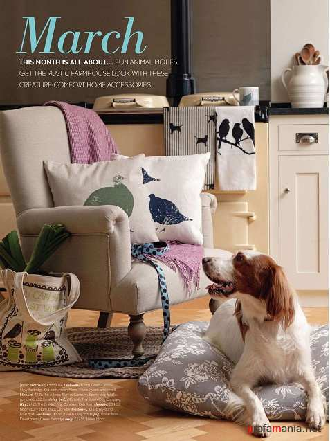 Country Homes & Interiors - March (2011) PDF