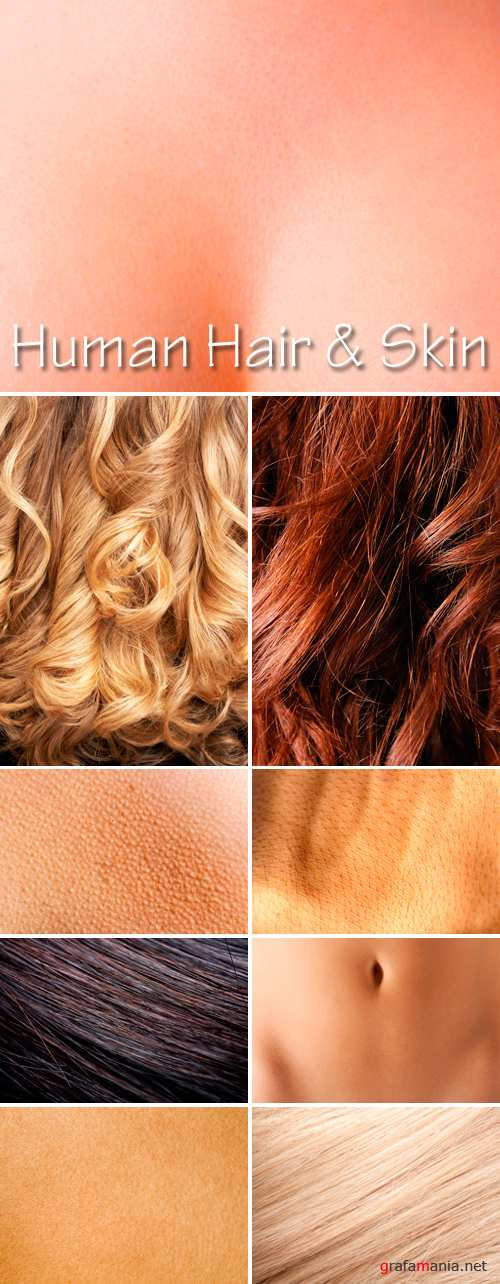 Stock Photo - Human Hair and Skin