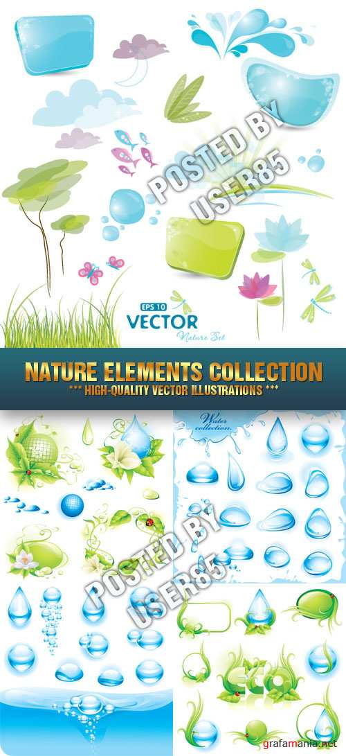 Stock Vector - Nature Elements Collection