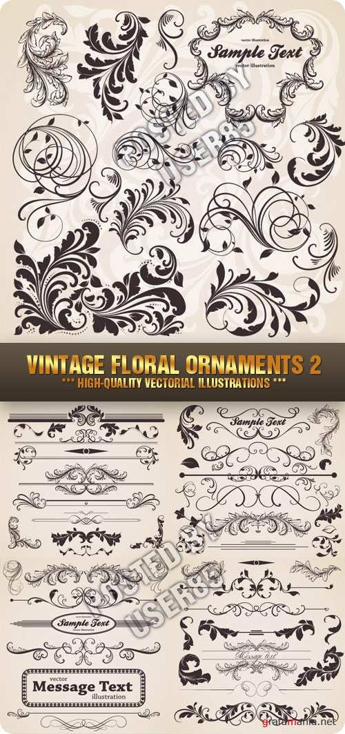 Stock Vector - Vintage Floral Ornaments 2