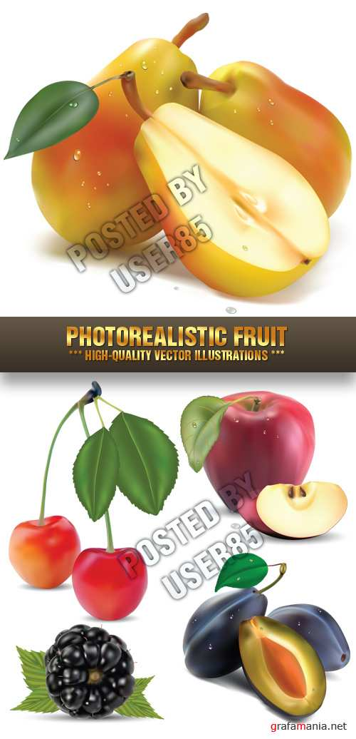 Stock Vector - Photorealistic Fruit