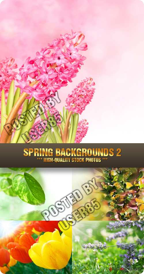 Stock Photo - Spring Backgrounds 2