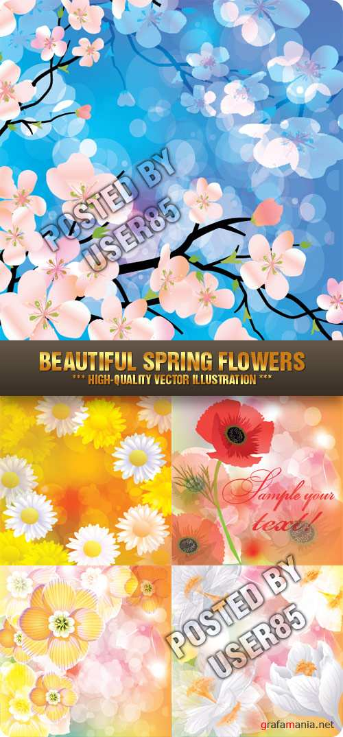 Stock Vector - Beautiful Spring Flowers