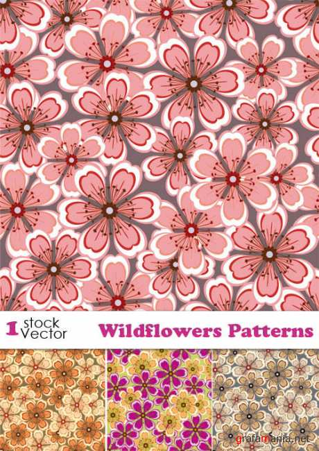 Wildflowers Patterns Vector