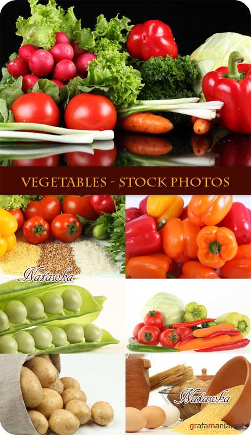 Vegetables - Stock Photos
