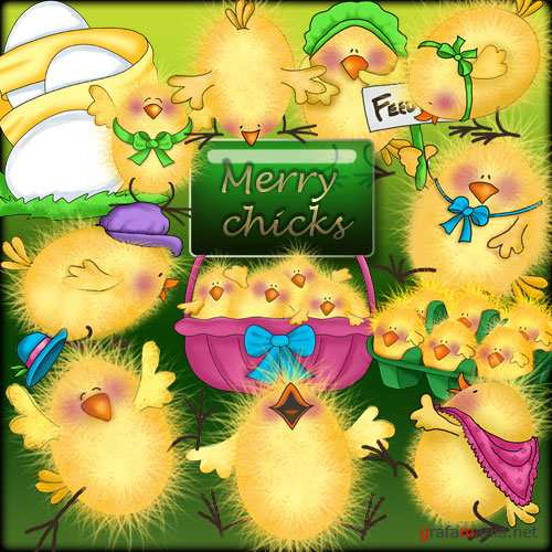 Merry chicks - ������� ������� � png