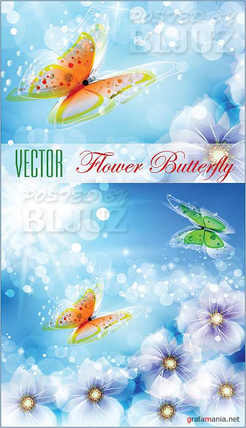 Vector Flower Butterfly