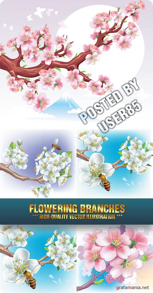 Stock Vector - Flowering Branches